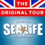 Bus Tour & Sea Life London Aquarium Ticket